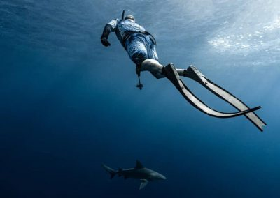 An image of a diver swiming in the open ocean aboard a Florida Shark Tour with Florida Shark Diving